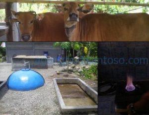 integrasi tanaman - ternak