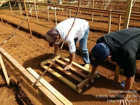 05 Alat yang Memudahkan Proses Penanaman Bawang Merah TSS pekarangan fungisida bawang merah