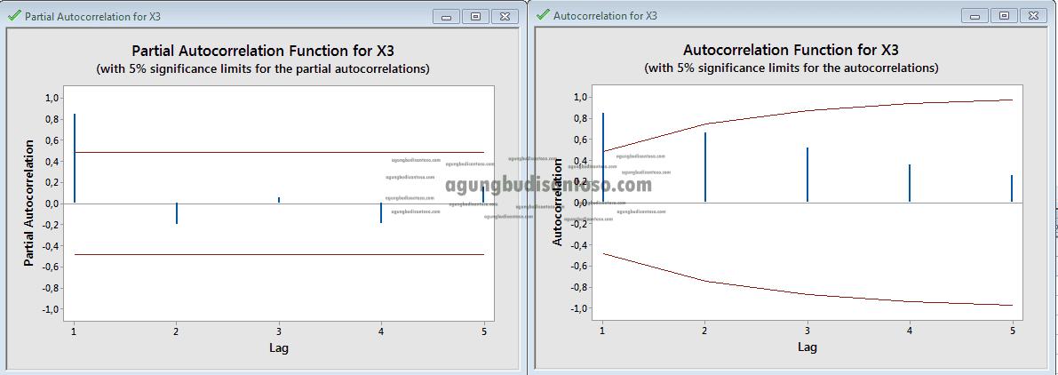 Screenshot_4 Memahami Pola ACF dan PACF di SARIMA time series arima sarima acf dan pacf