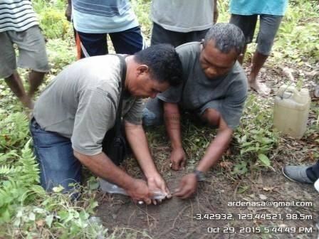 IMG_20151029_174449 Memulihkan keadaan tanaman perkebunan pasca panen dengan pemupukan pupuk perkebunan pala cengkeh