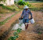 Trik-menghitung-HOK-140x130 Trik Menghitung HOK Usahatani usahatani pertanian hortikultura hok