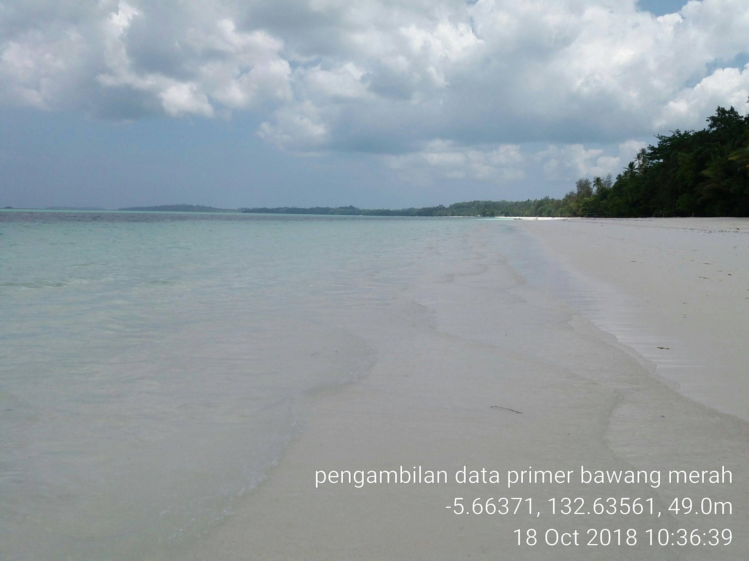 menikmati pantai setelah penelitian bawang merah